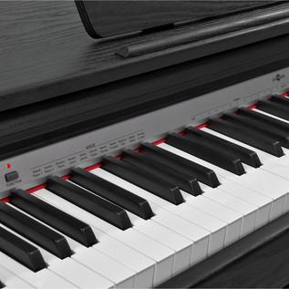 DP10 Digital Piano