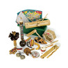 Percussion Plus PP620 Kit PP620 ritmo mondo pacchetto