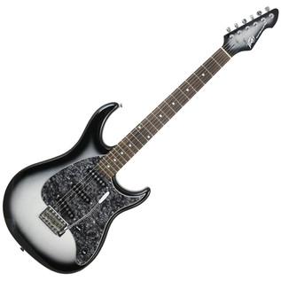 Peavey Raptor Custom Electric Guitar, Silverburst