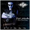 Corde di chitarra elettrica di Paul Allender Signature ROTOSOUND PA10, 10-52