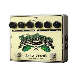 Electro Harmonix Turnip Greens, Holy Grail Max/Soul Food Pedal