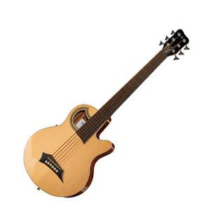 Warwick Alien Standard 6-String Acoustic Bass, Natural
