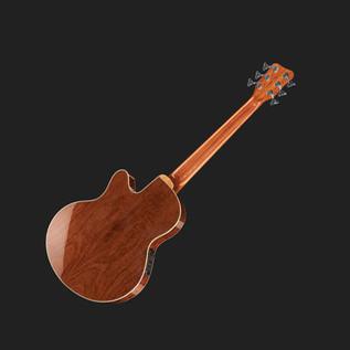 Warwick Alien Standard 6-String Acoustic Bass, Natural 2