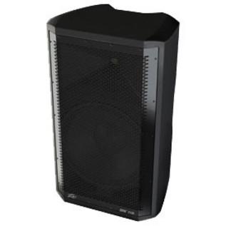 Peavey DM 112 Dark Matter Active PA Speaker