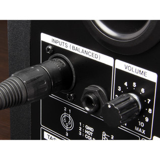 Tascam VL-S5 Active Studio Monitor, Inputs