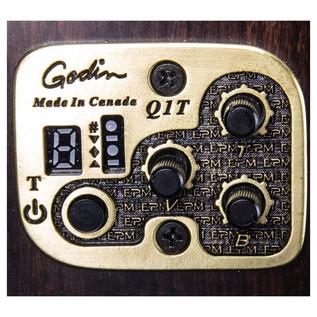 Godin EPM Quantum I Electronics