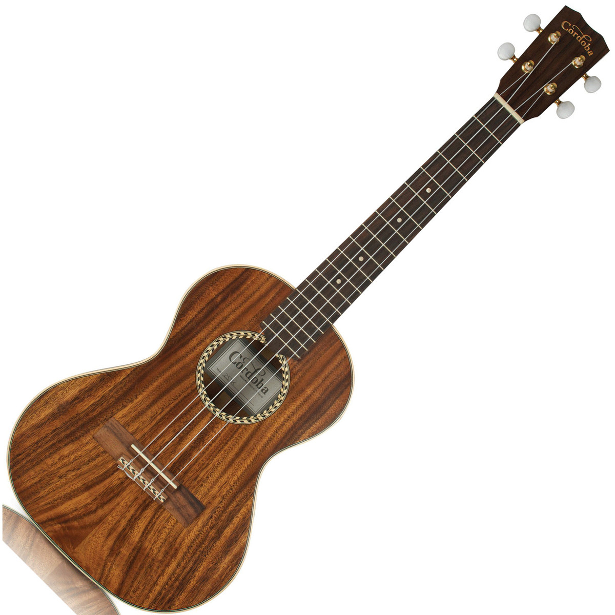 Cordoba Baritone Ukulele : cordoba 25tk tenor ukulele at ~ Hamham.info Haus und Dekorationen