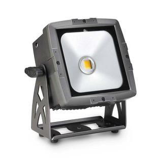 Cameo Flat Pro IP65 Outdoor Flood Light with 50w Cob LED