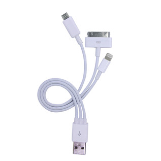 Electrovision USB 2.0 Charging Cable for iPhone, iPod and Samsung