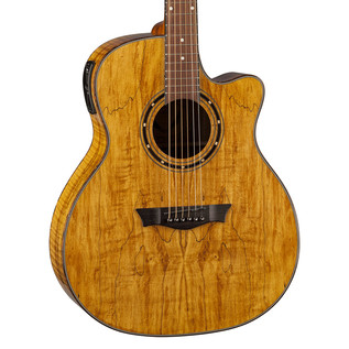 Dean Exotica Electro Acoustic Guitar, Spalt Maple