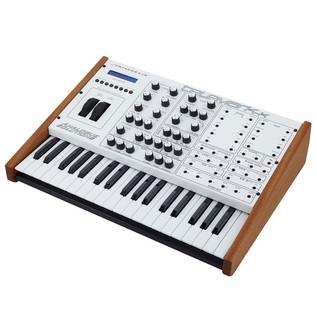 Analogue Solutions Telemark-K Synthesizer, Keyboard