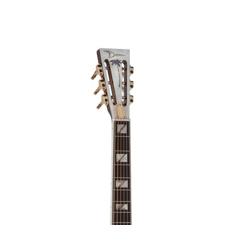 Dean Resonator Thin Body Electric Resonator Guitar, Chrome/Gold