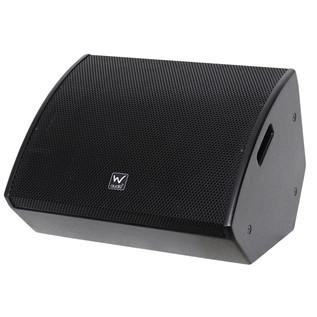 W Audio SM 12 Stage Monitor