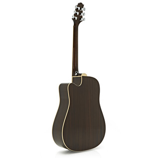 Greg Bennett D-2CE Electro Acoustic Guitar, Natural