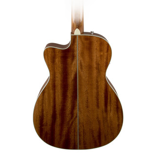 Fender PM-3 Standard Back Close