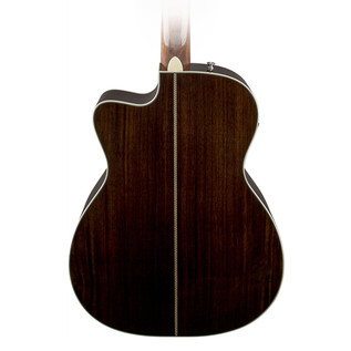 Fender PM-3 Deluxe Back Close