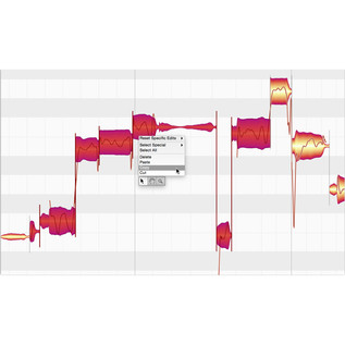 Celemony Melodyne 4 Essential - Screenshot 2
