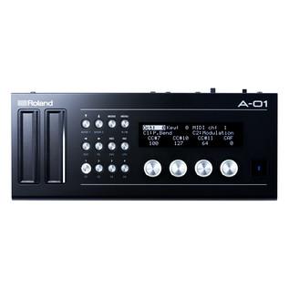 Roland A-01 MIDI Controller and Sound Generator