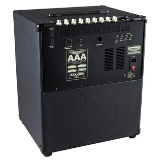 Ashdown AAA-300 EVO-210T Lightweight 300w 2 x 10