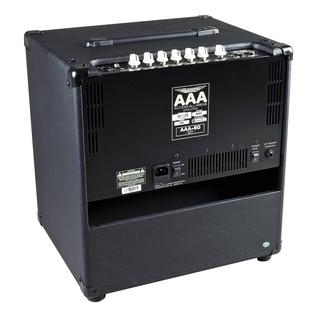 Ashdown AAA-60-EVO-10T Lightweight 60w 1 x 10