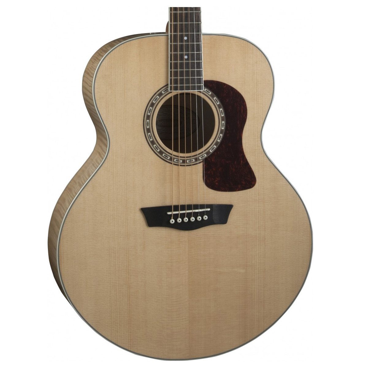 Washburn Guitars Case Evaluation Essay Sample