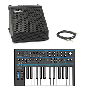 Novation Bass Station II with SubZero DR-30 Amp