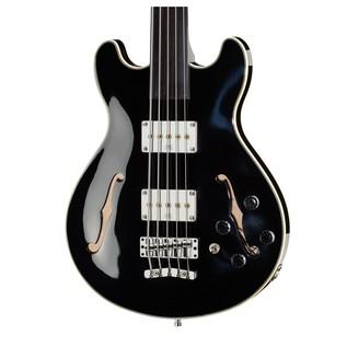 Warwick Rockbass StarBass 5-String Fretless Bass, Black High Polish