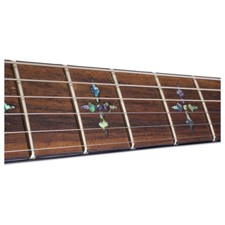SchecterHellraiser C-1 Electric Guitar,Black Cherry