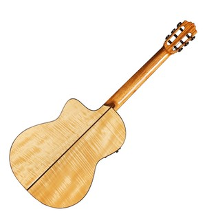 Cordoba GK Pro Maple Electro Acoustic Classical Guitar Back