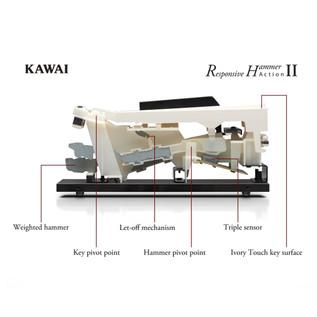 Kawai CS4 Hammer Action