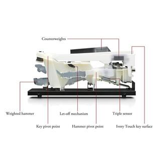 Kawai CN35  Hammer Action Diagram