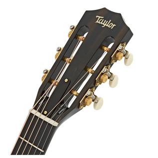 Taylor 520e