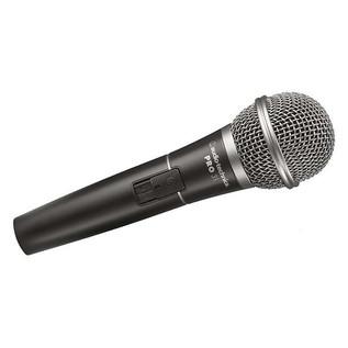 PRO31QTR Dynamic Microphone