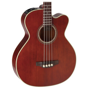 Takamine PB5-ANS Body Close