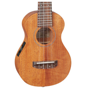 Takamine EGU-S1 Body Close