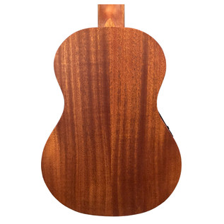 Takamine EGU-T1 Back Close