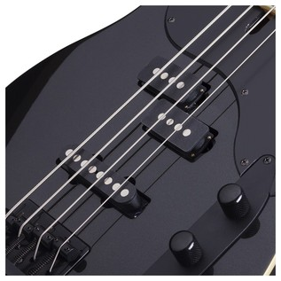 Schecter Michael Anthony Bass Guitar