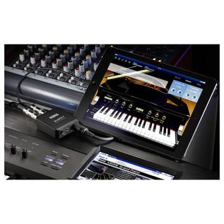Korg plugKEY MIDI Audio Interface for iOS Devices, Black