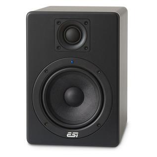 ESI aktiv 05 Active Studio Monitor