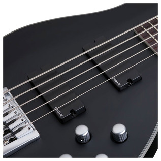 Schecter Damien Platinum-5 Bass