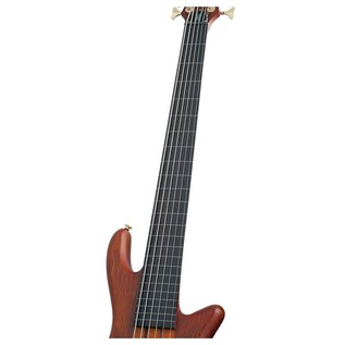Schecter Stiletto Studio-6 Fretless Bass