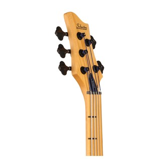 Schecter Stiletto Session 5 String Fretless Bass Guitar