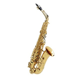 Buffet Senzo Alto Saxophone, with Yellow Brass Body & Brass Keys
