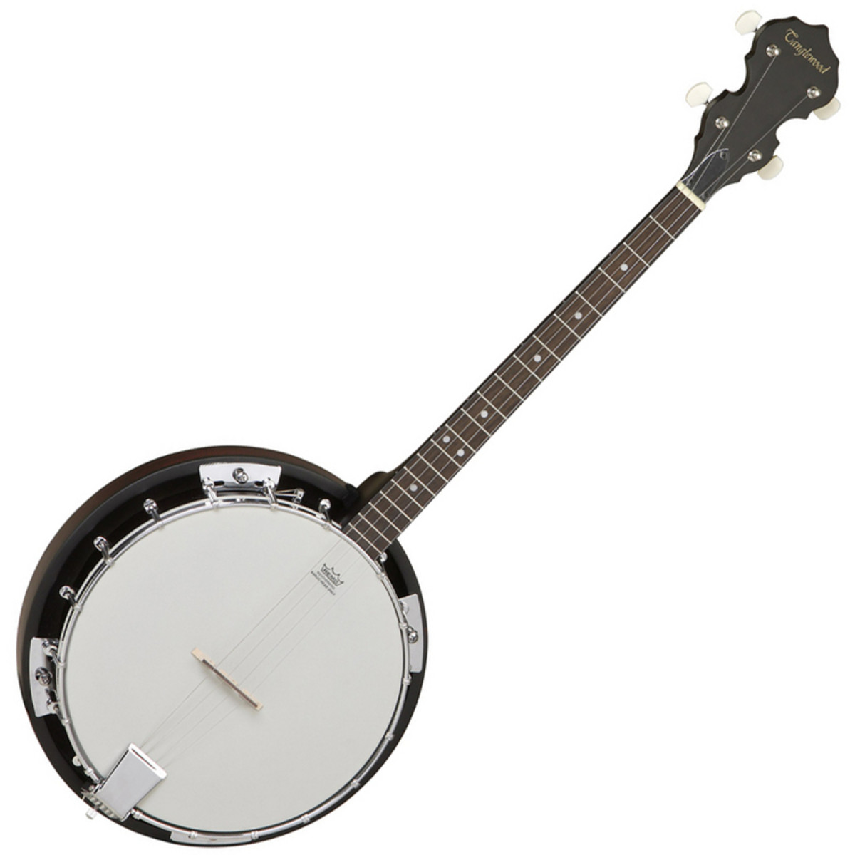 Tanglewood Standard 4 String Tenor Banjo At
