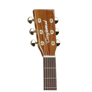 Tanglewood TW15ASM