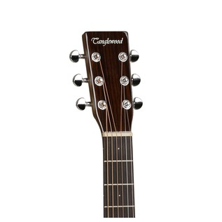 Tanglewood Sundance Delta TW40 PD Acoustic Guitar