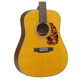 Tanglewood TW40DAN Sundance Acoustic