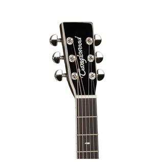 Tanglewood TW45VSE Electro Acoustic