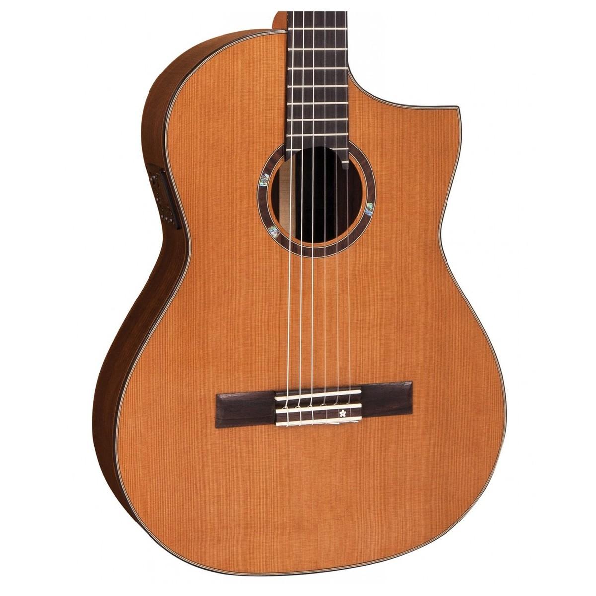 vintage roger williams nylon electro acoustic crossover guitar at. Black Bedroom Furniture Sets. Home Design Ideas
