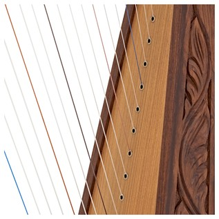 19 String Harp by Gear4music